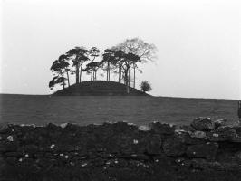 Fairy mound in Lattin, Co. Limerick. GPS 52°28 7.81 N 8°16 14.13 W
